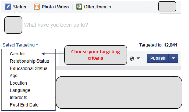targeted audiences on fb page