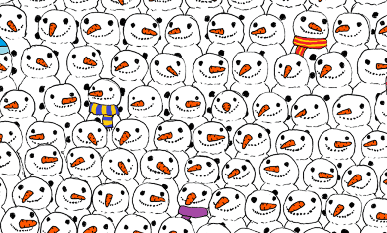 can you find the panda