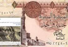dollar against pound in Egypt, dollar crisis, egypt, cairo, memes, float, devastation, 2016, egyptian pound