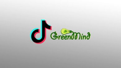 TikTok Assigns Egyptian Agency 'Green Mind' To Manage Its MENA's YouTube Channel